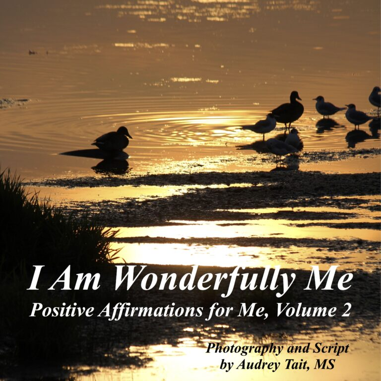 I Am Wonderfully Me: Positive Affirmations for Me! Volume 2